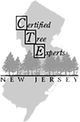 New Jersey Certified Tree Expert